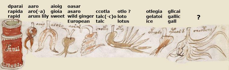 Le manuscrit de Voynich Folio_99r_2